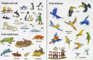 big-sticker-book-of-animals-seeinside2