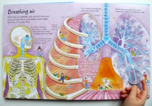 see-inside-your-body-4