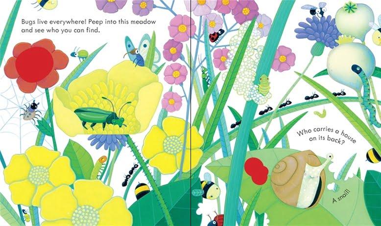 peep-inside-bug-homes-1
