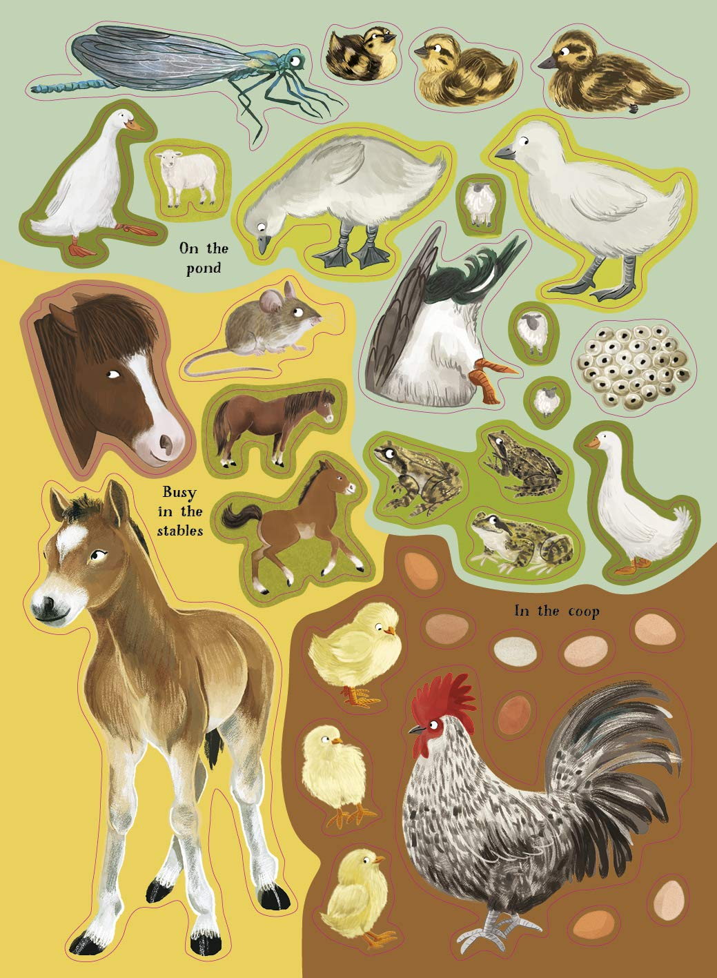 national-trust-horses-hens-and-other-british-farm-animals-3