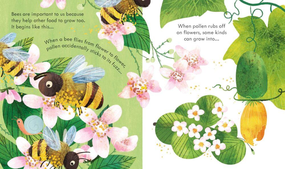 peep-inside-a-beehive-2