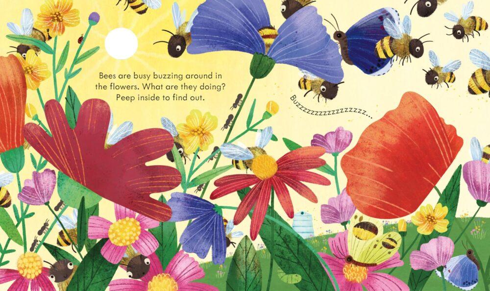peep-inside-a-beehive-3