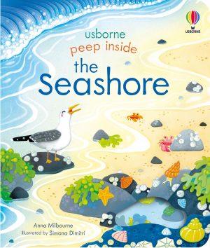 peep-inside-the-seashore